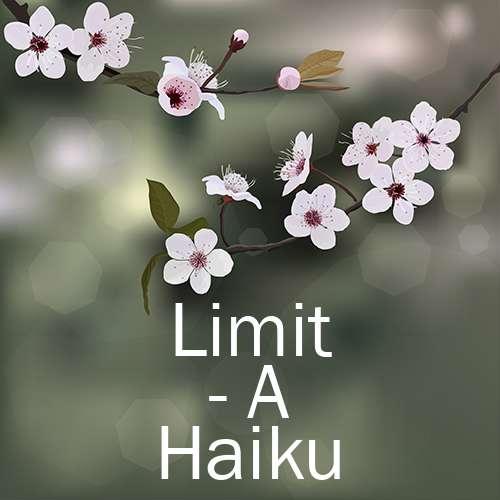 Limit - A Haiku