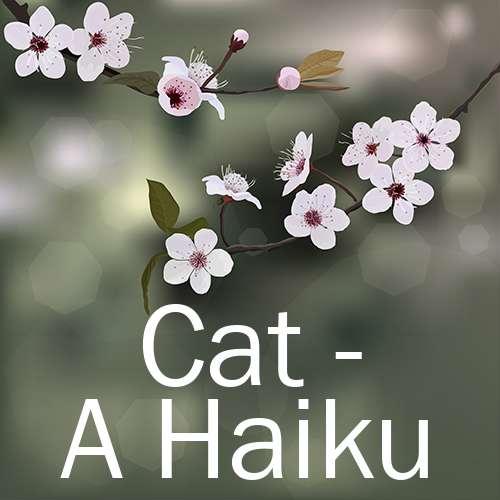 Cat - A Haiku
